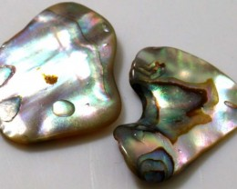 12.45 CTS ABALONE SHELL PARCEL (2PCS) ADG-1331