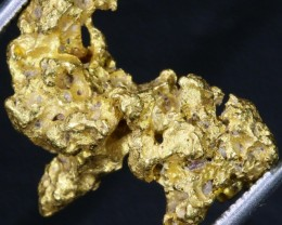Kalgoorlie Gold nuggets