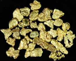 One Gram 14 screen Yukon Gold nuggets LGN 1398