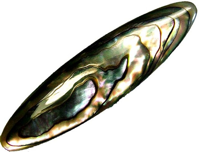 ABALONE PUFF  DOUBLE SIDED 19.60  CTS [PF336]